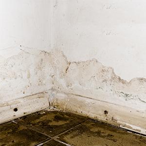壁と床の汚れ